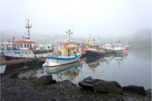 bacalao-de-islandia-barcos-pesca